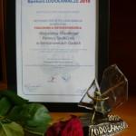 Certyfikat przyznający statuetkę oraz statuetka otrzymana w konkursie Lodołamacze 2010 w etapie regionalnym. Powiększ zdjęcie.